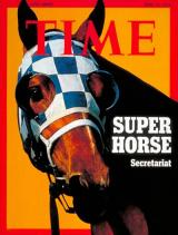 p-Horse Racing